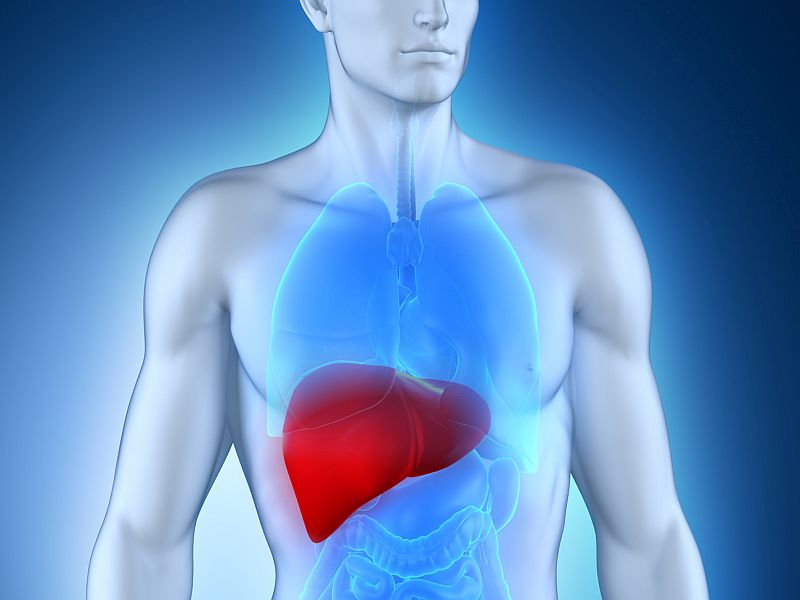 Hepatitis C-infected liver transplants may work well for those with the virus