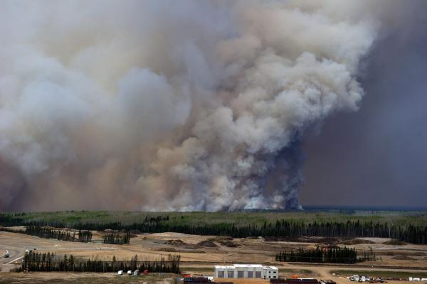 Alberta oil spared by way of fires