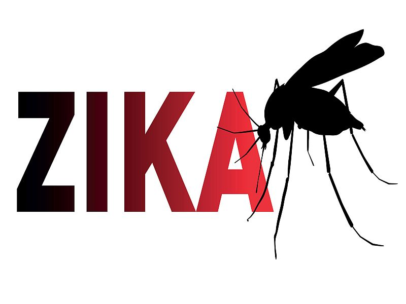 Zika's delivery via mosquito bite may boost its effect