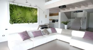 Green Vegetable Pictures By Sundar Italia