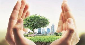 Sustainable real estate: Supply gap, awareness vacuum persist
